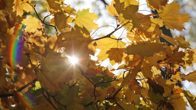 Днес ни очаква пореден слънчев ден с температури между 21