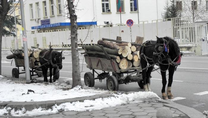 Снимка: Ченгета конфискуваха каруци с незаконни дърва