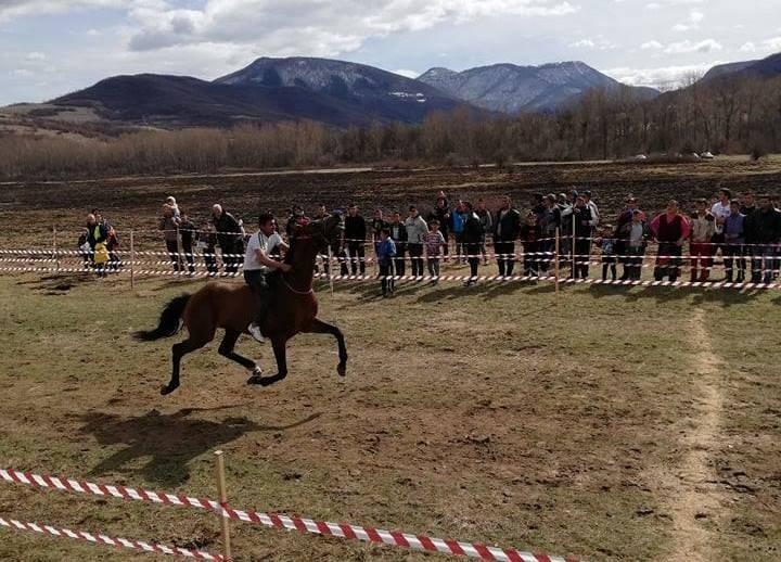 В събота, за поредна година община Вършец организира конни надбягвания,