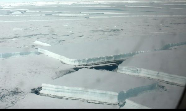 Загубата на лед в Антарктида след 1992 г. възлиза на
