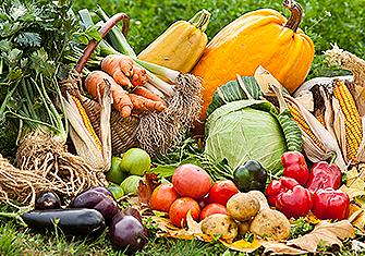 Цените през 2020 г. на дребно и едро на зеленчуците
