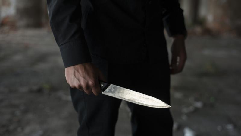 Френската полиция задържа въоръжен с нож мъж в училище близо