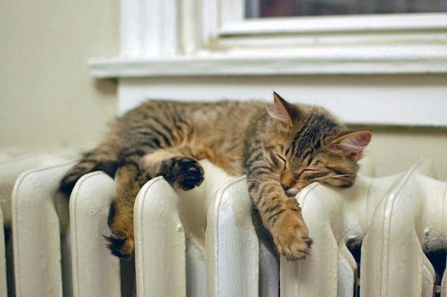 Изтича срокът за кандидатстване за помощи за топло