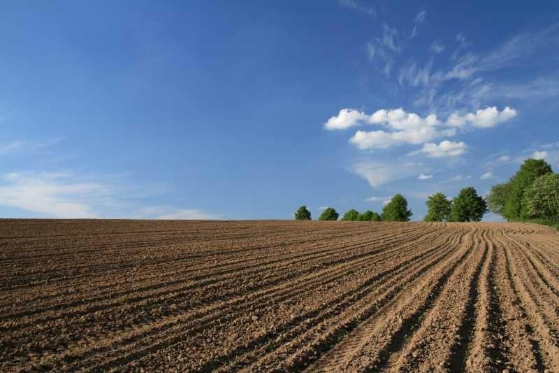Поредна гореща сделка с евтини имоти. 80 декара общинска земя