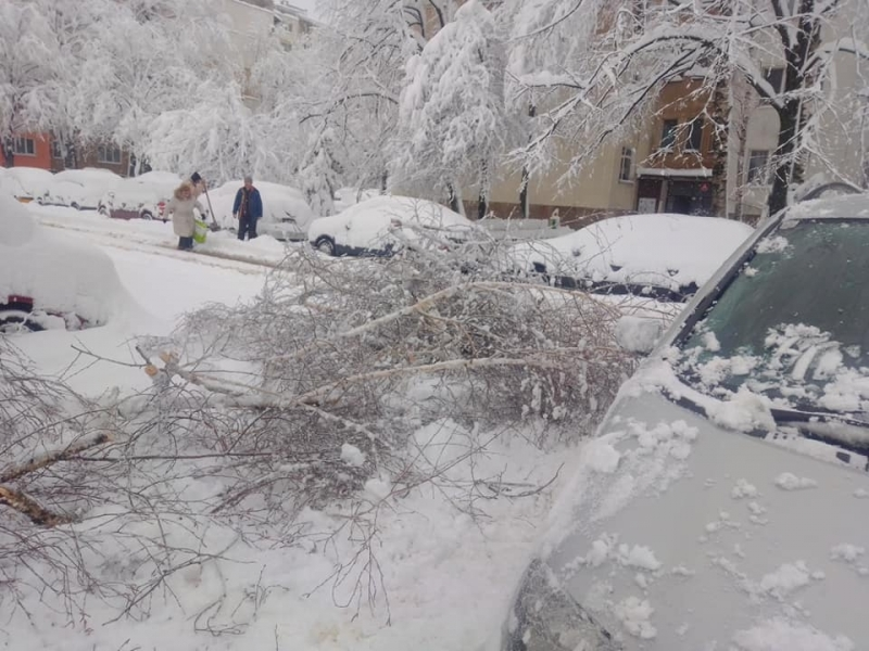 Снеговалежът с висока интензивност на територията на област Враца предизвика