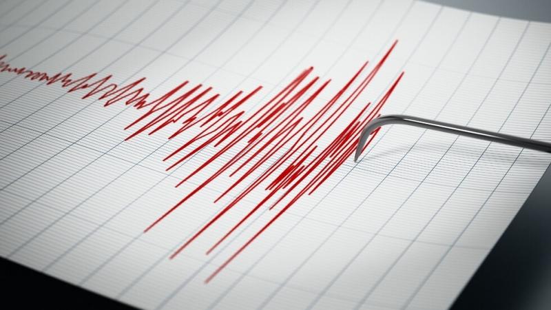 Земетресение от 4.5 разтърси Източна Турция