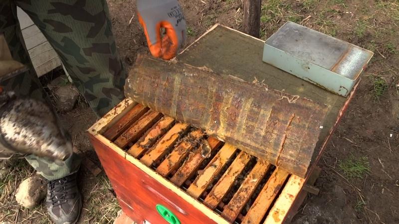 Кражба на два пчелни кошера е извършена в землището на