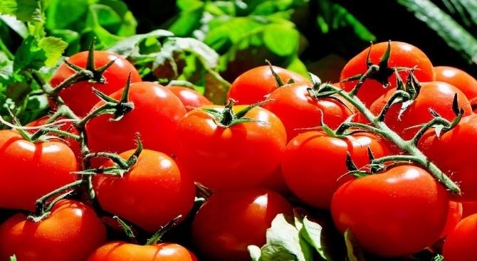"""""""Трябва много строг контрол при зеленчуците, които влизат от Турция,"""