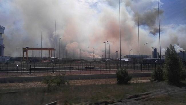 Горският пожар, който избухна в Чернобилската забранена зона вчера, е