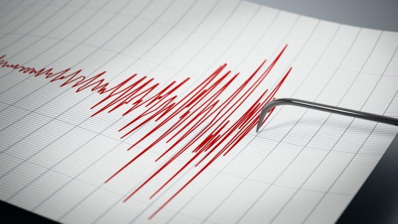Земетресение от 5,3 по Рихтер бе регистрирано до крайбрежието на