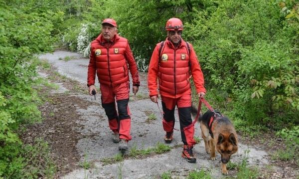 Планински спасители издирват възрастен човек в Родопите, съобщи NOVA. Той