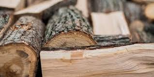Двама от Монтанско отнесоха актове заради незаконни дърва, съобщиха от