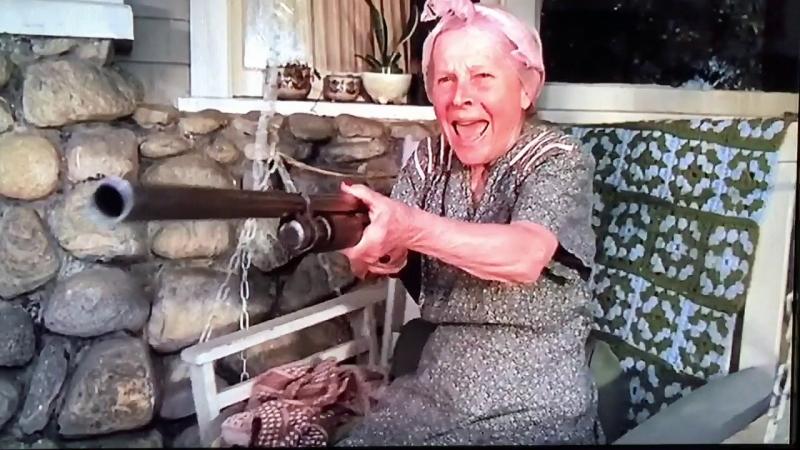 Въоръжена с ловна пушка баба в Монтанско бе осъдена условно