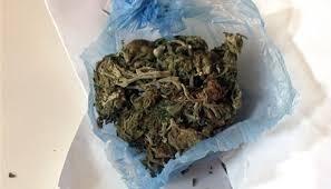 Полицията е иззела дрога от жилище в Мездра, съобщават от