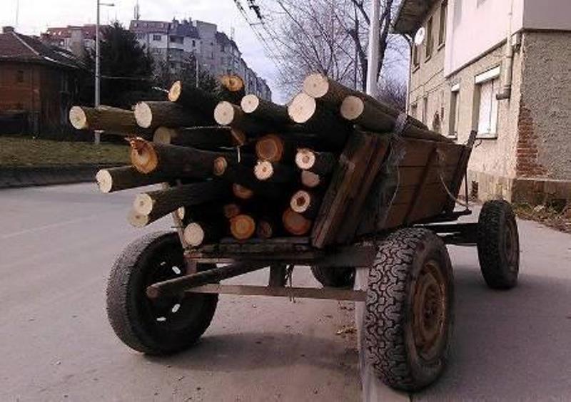 Бракониер от Монтанско е глобен, карал каруца пълна с дърва,