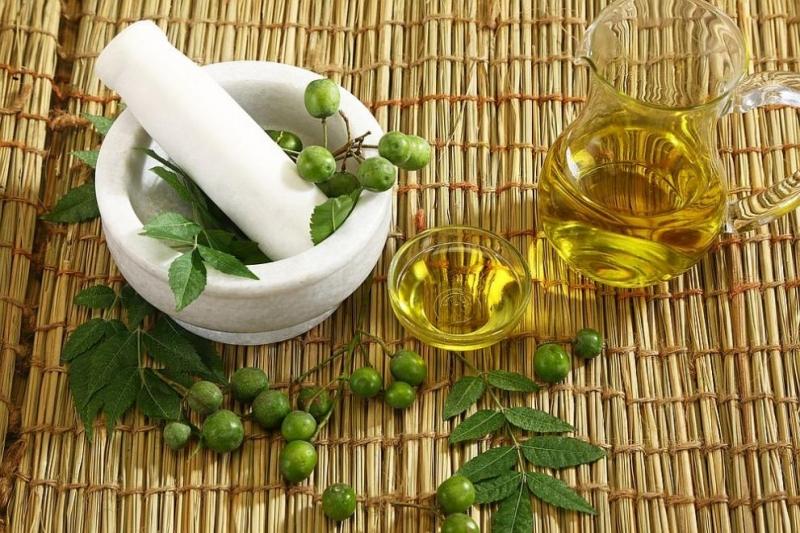 Аюрведа е древна индийска медицина, която лекува всички болести, а