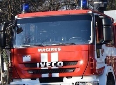 55-годишна жена и 10-годишно загинаха при пожар в къща в