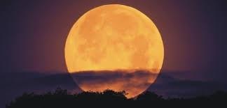 Снимка: Днес ще станем свидетели на най-ярката и голяма Луна за 2019 година