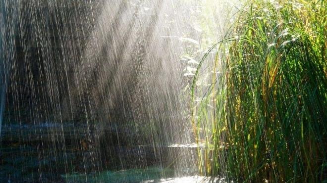 Прогнозата на сайта Акууедър, публикувана днес, предвижда екстремни горещини във