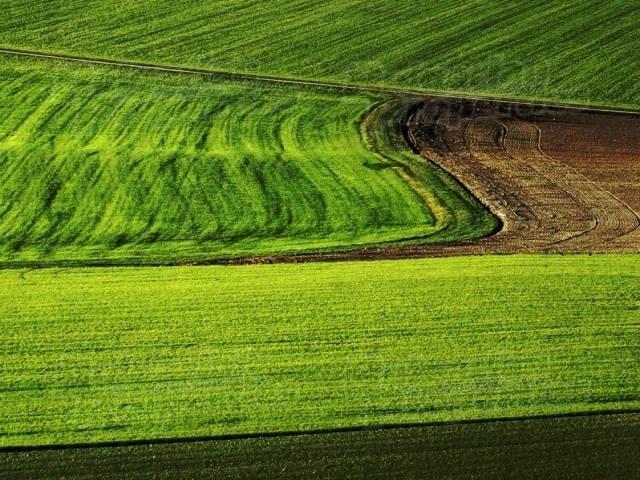 """""""Миг Агро Груп"""" предлага най-добрата цена за вашата земя, обадете се и проверете"""