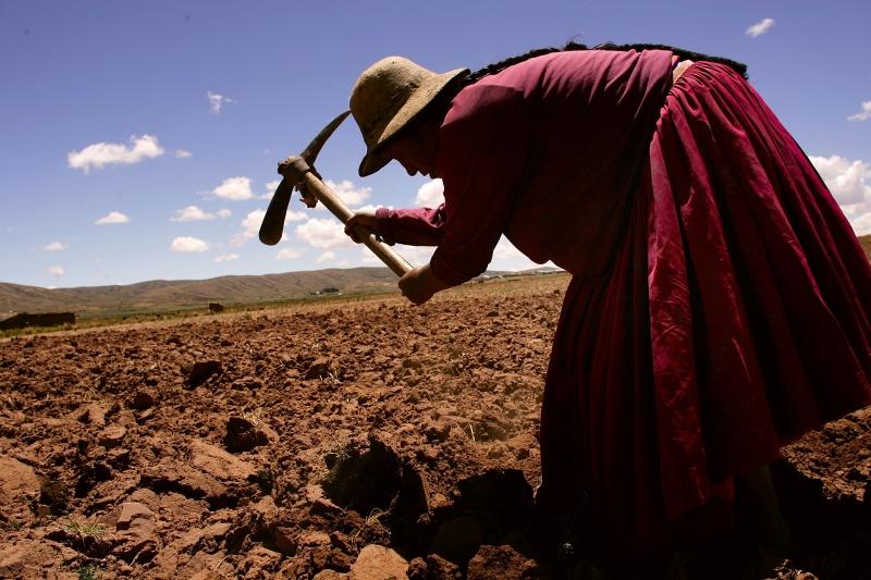 Боливийката Хулия Флорес Колке, която епочти на 118 години може