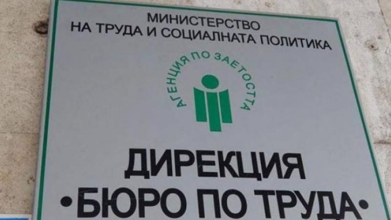 Заради потока от безработни! Агенцията по заетостта временно разкрива нови офиси в големите градове