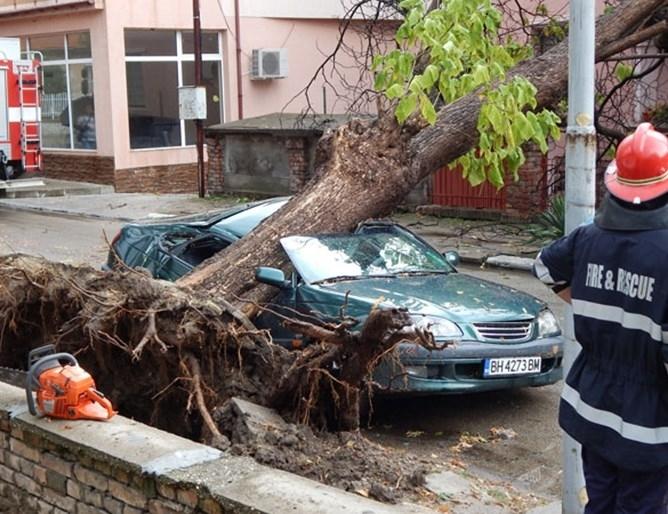 Жена осъди община Видин заради унищожения си автомобил, който бил