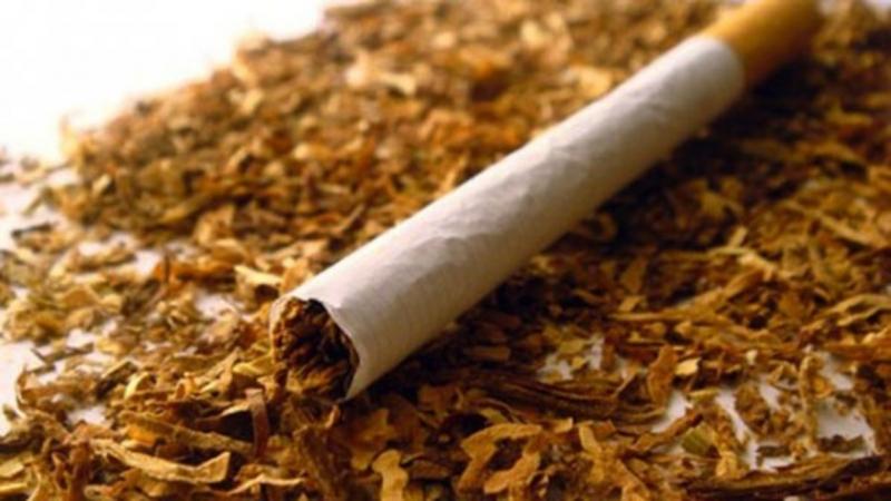 Снимка: Само за ден! Полицията спипа трима от Монтанско, кътали контрабанден тютюн в къщите си