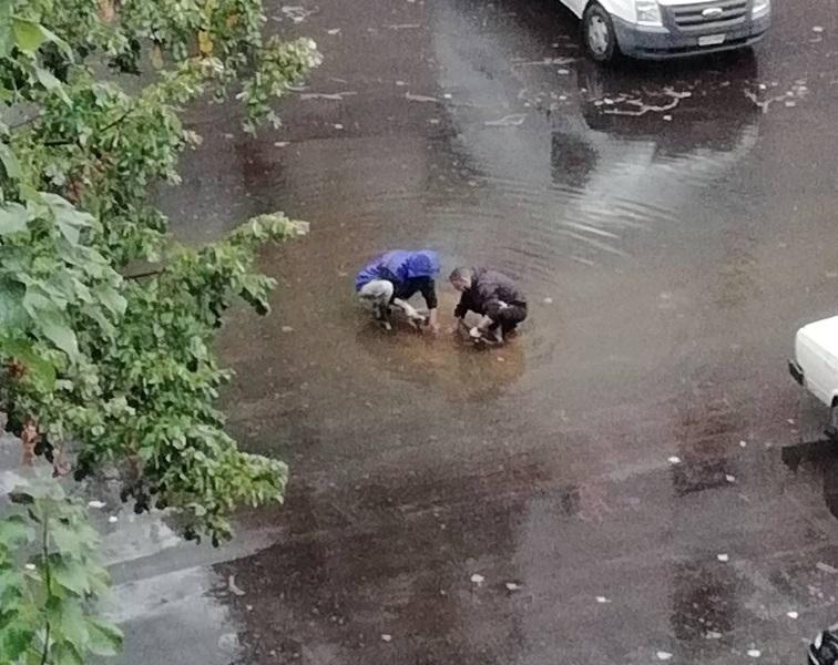 """Новоасфалтирана улица във Видин смая гражданите с """"качеството си"""", научи"""