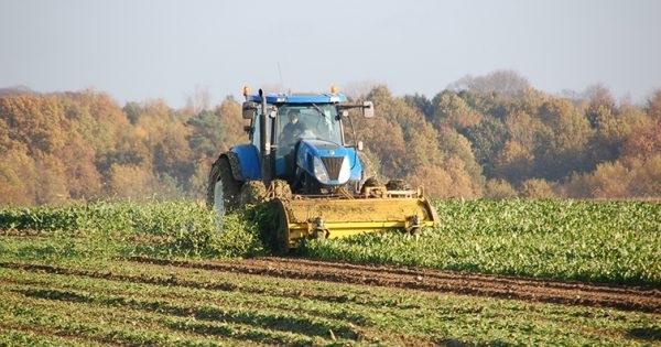 Навлизането в есенния сезон и прибирането на тазгодишната реколта форсира
