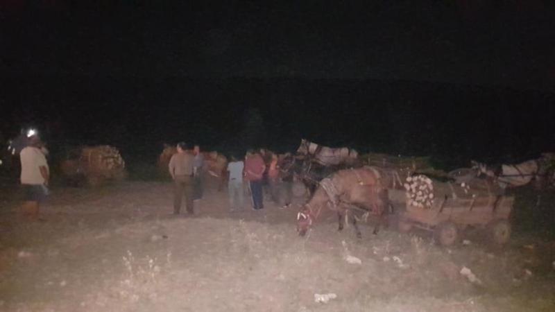 Горски служители заловиха бракониери да транспортират незаконни дърва, научи агенция