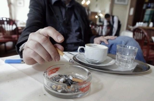 19 ноември e обявен за Международен ден без тютюнопушене. Специалистите