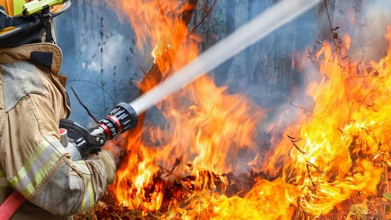 Пожар е избухнал в петролна рафинерия във Франция в събота