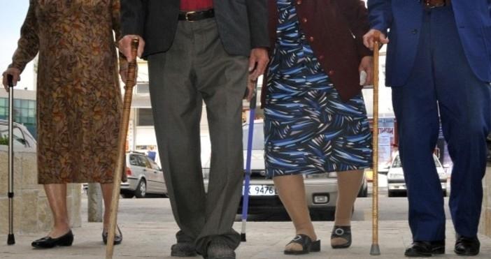 146 000 са работещите пенсионери у нас, показват данните на