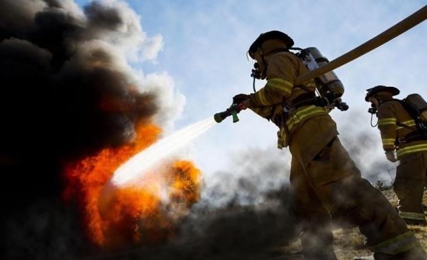 Пожар гори в района на село Реброво, в близост до