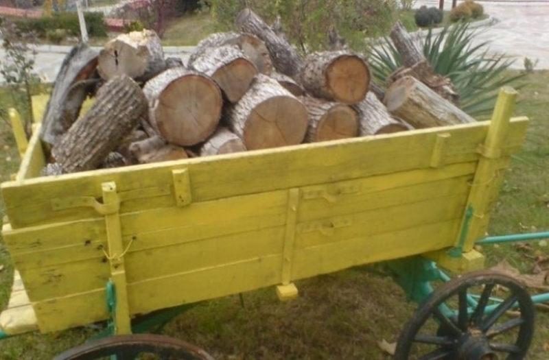 Служители на реда са хванали жена да превозва незаконни дърва