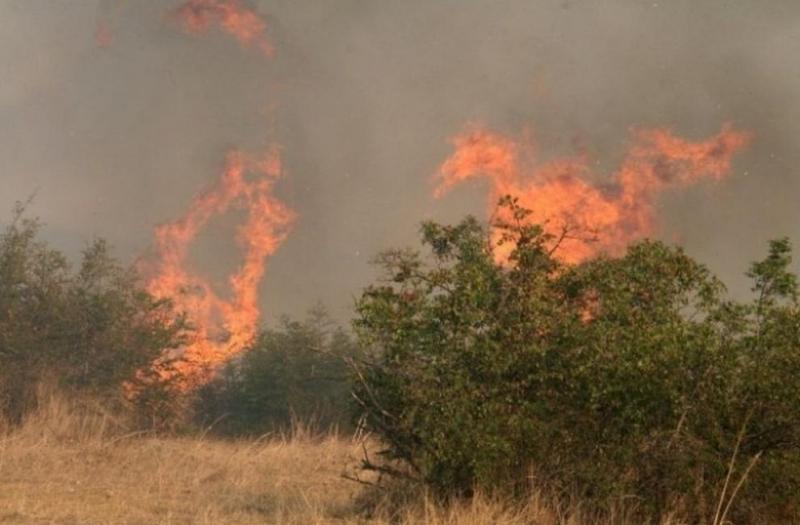 Огромен горски пожар се разрази край град Милас (в турския