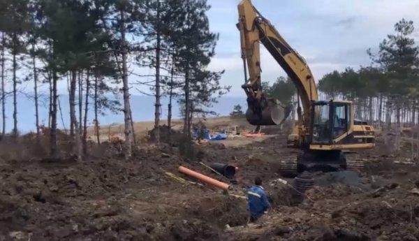 """Борова гора се изсича край къмпинг """"Арапя"""" за строителството на"""