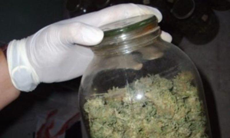 Служители на реда са намерили канабис в къща в Монтана,