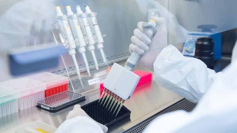 Генетици и биолози от Калифорнийския университет в Сан Диего установиха,