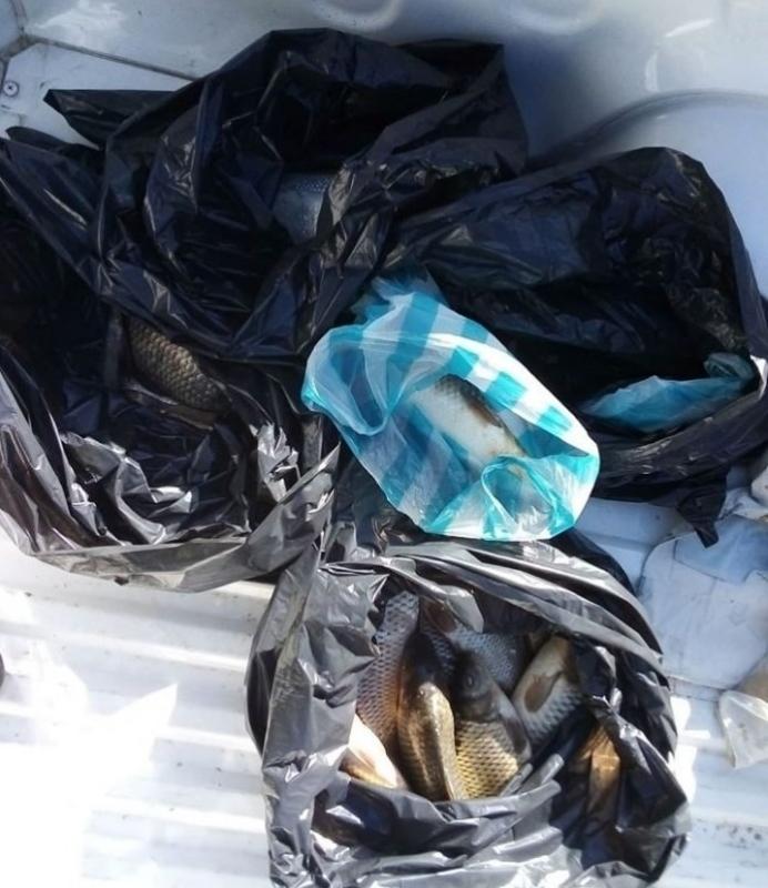 20 килограма риба дариха от ИАРА на Дома за стари