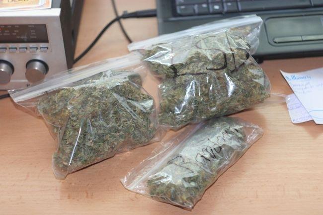 Полицаи намериха и иззеха голямо количество канабис от кола в Лом