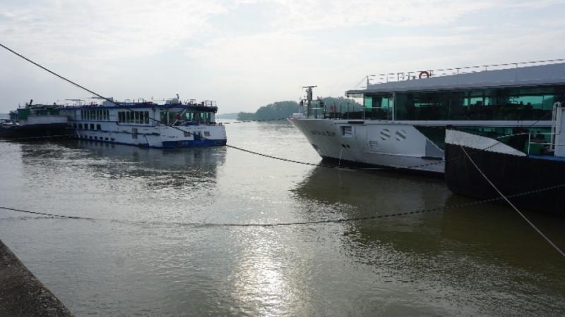 Нивото на река Дунав при Видин достигна 751 сантиметра тази