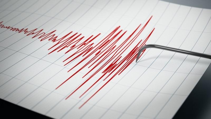 Слабо земетресение е регистрирано днес в 00.47 ч. българско време