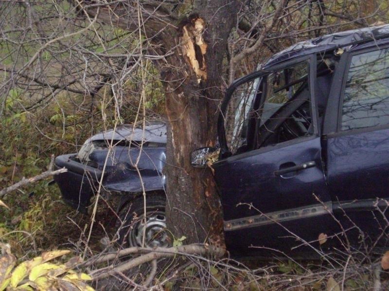 Жена е пострадала при катастрофа във Врачанско, съобщиха от полицията