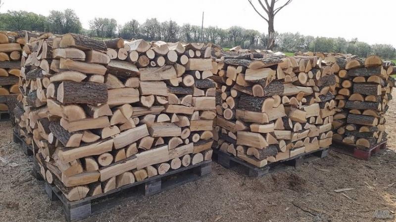 Сериозно покачване на цената на дървата за огрев отчитат от