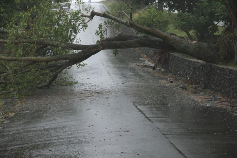 Силен вятър в Словения причини материални щети и затвори училища