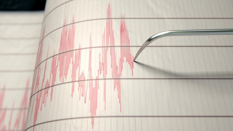 Земетресение е регистрирано в района на Вранча. Това сочи справка
