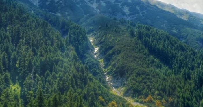 Екипи на Планинската спасителна служба помогнаха на жена при инцидент