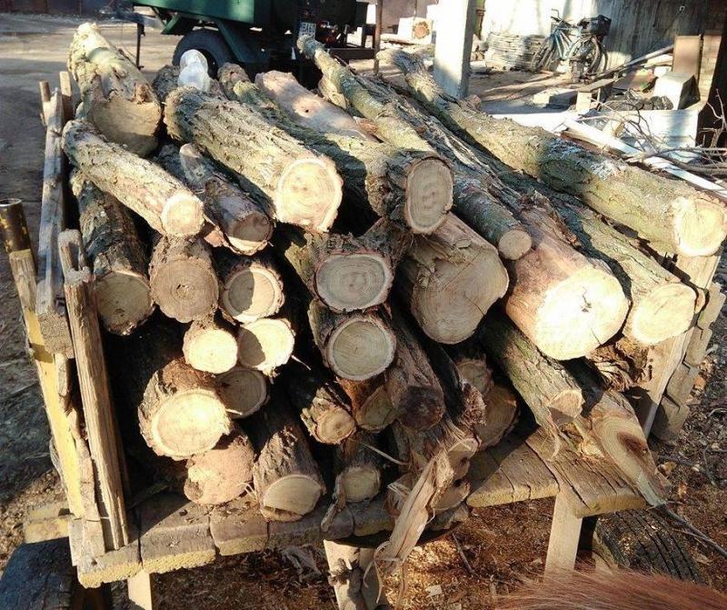 Полицията е иззела нелегални дърва от каруца във врачанското село